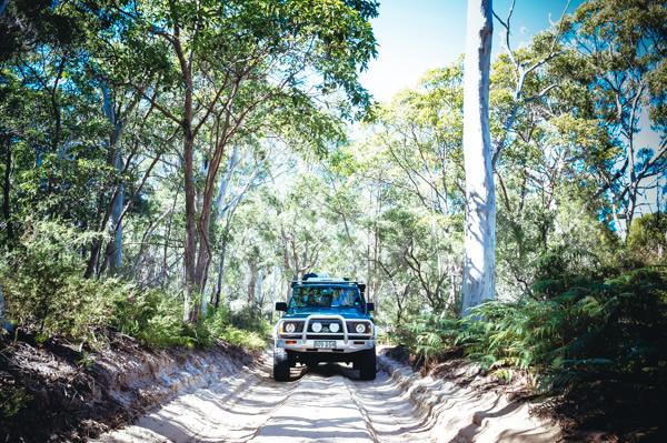 Moreton Island 4WD track, offroad