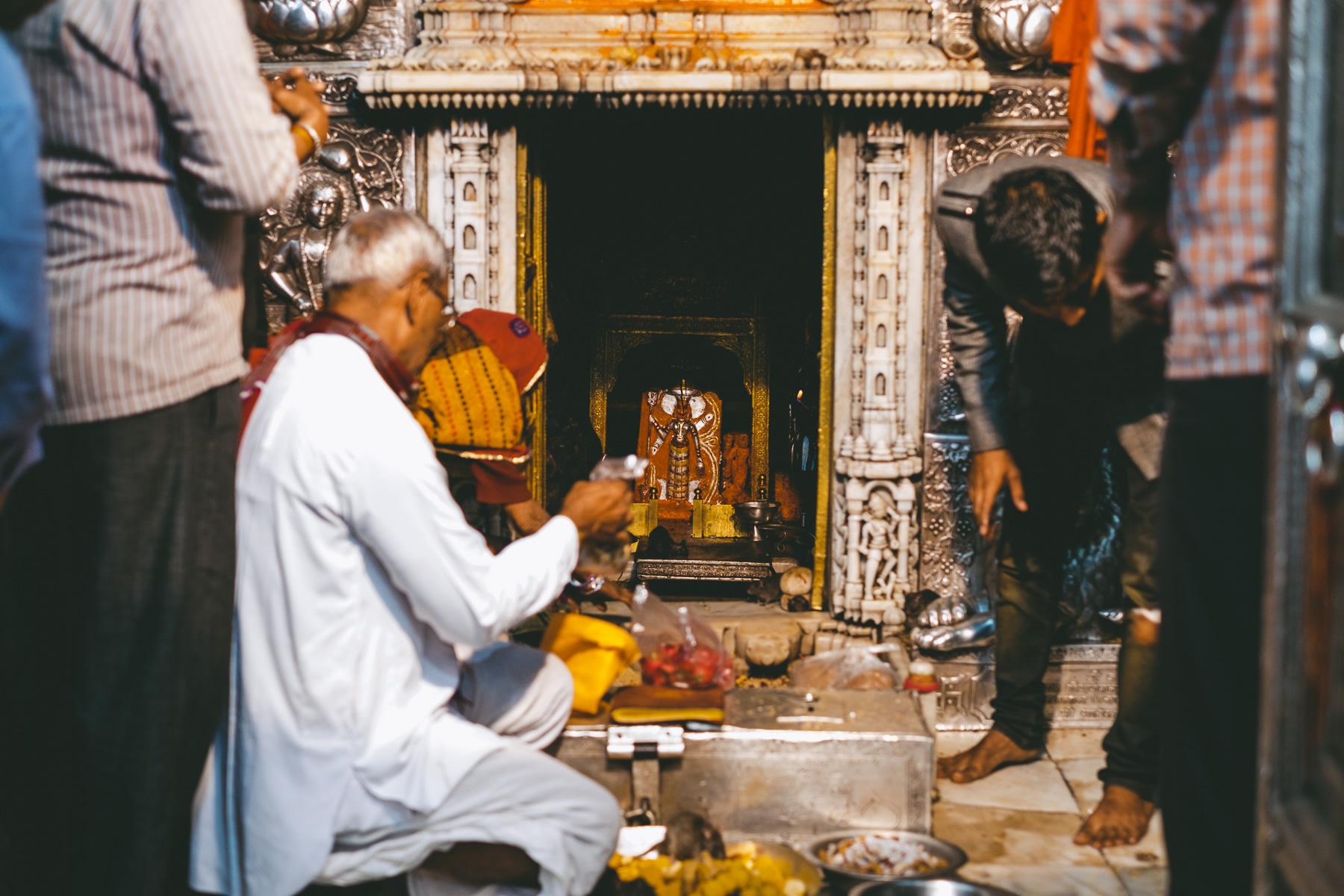 Godess Karni Mata, Deshnoke, Rajasthan, Rat Temple, Nathan Brayshaw
