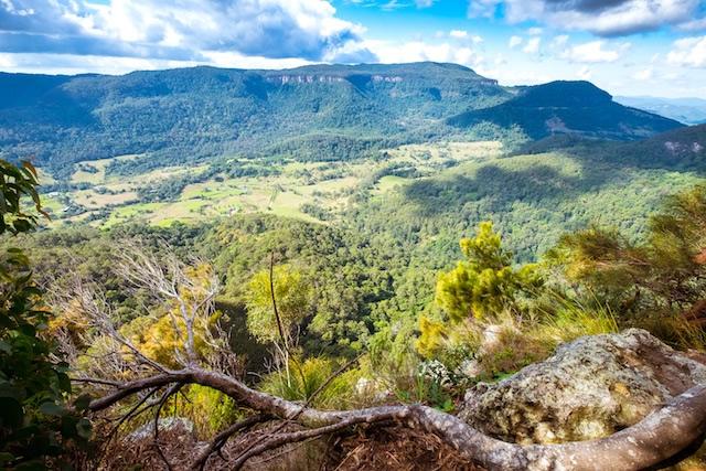Numinbah-lookout-Lamington-National-Park-Binna-Burra-Gold-Coast-bushwalking-hiking