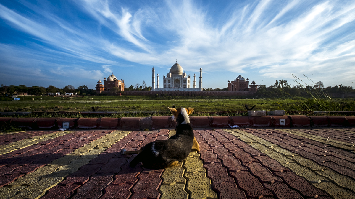 Taj Mahal, Agra, India, travel photography, Nathan Brayshaw,